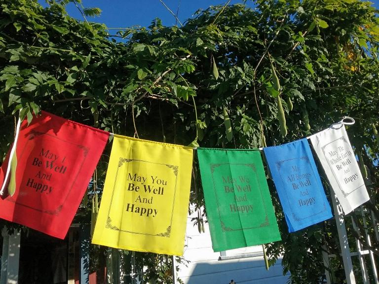 flags nz