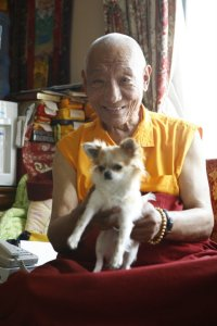 Bairo Rinpoche with dog 2008